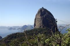 Sugar loaf, Rio de Janeiro. Royalty Free Stock Photos
