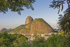 Sugar Loaf. View of Sugar Loaf from Pasmado the lookout for Botafogo Royalty Free Stock Photography