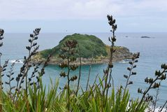 Sugar Loaves Island off Back beach in New Plymouth. Island off back beach in New Plymouth Taranaki stock photography