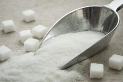 Sugar on metal scoop Royalty Free Stock Photos