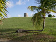 Sugar Mill and a Crooked Palm Tree Stock Images