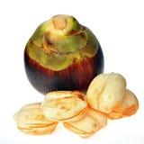 Sugar palm friut. Isolated on white background stock photography