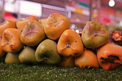 Sugar Palm fruit, a fuit from tropical forest plant. Sugar Palm fruit, Sugar Palm fruit, a fuit from tropical forest plant, edible as fresh fruit and dessert stock photography