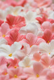 Sugar paste flowers Stock Image