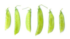 Sugar pea pods Royalty Free Stock Photos