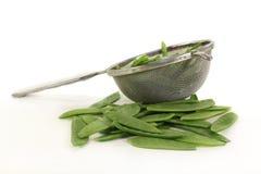Sugar peas Stock Image