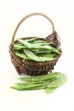 Sugar peas in a basket Royalty Free Stock Photo