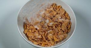 Sugar Poured op een Kom Graangewassen, stock videobeelden