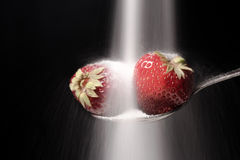 Sugar pours on the spoon with strawberry Stock Photo