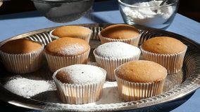 Sugar Powder Being Sprinkled on Muffins stock video footage