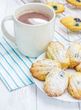 Sugar powdered madeleines with blueberries. And hot chocolate Royalty Free Stock Photo