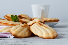 Sugar powdered madeleines with coffee and lemon. Selective focus Royalty Free Stock Image