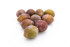 Sugar Prune Stock Photo