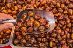 Sugar roasted chestnut Stock Image
