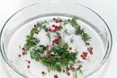 Sugar, salt, pepper, herbs in a plate, mixture for salting fish. Food Stock Photos
