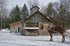 Sugar shacks. royalty free stock photos