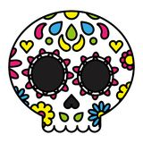 Sugar skull colorful floral day of the dead concept Stock Photos