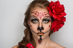 Sugar skull mask Royalty Free Stock Image