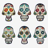 Sugar skulls collection. Beautiful collection of mexican sugar skulls Stock Images