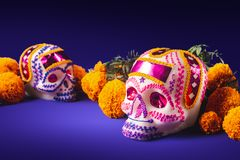 Sugar skulls in a purple background royalty free stock image