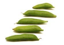 Sugar Snap Peas Stock Fotografie