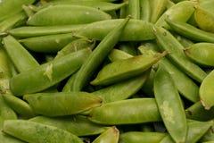 Sugar Snap Peas Stock Afbeeldingen