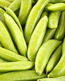 Sugar snap peas Stock Image