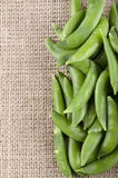 Sugar snap peas on jute Stock Image