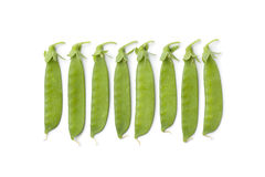 Sugar snap peas in a row. On white background Stock Images