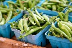 Sugar snap peas stock photography