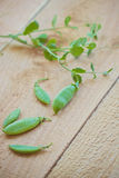 Sugar snap peas and vine Royalty Free Stock Photo