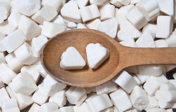 Sugar spoon. Wooden spoon with a sugar Stock Photos