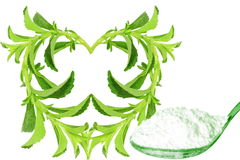 Sugar substitute heart shape Stevia plant and extract powder on white background Stock Images