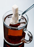 Sugar and tea Royalty Free Stock Photography