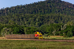 Sugar train. PROSERPINE, AUSTRALIA – OCTOBER 18, 2013: Freshly-cut sugar cane being transported from the field to the mill by rail on October 18, 2013 in royalty free stock photos