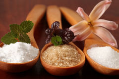 Sugar in wooden spoons Stock Images