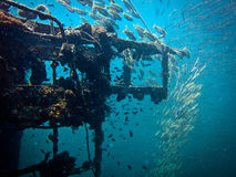 Sugar Wreck, Underwater Ship Royalty Free Stock Image
