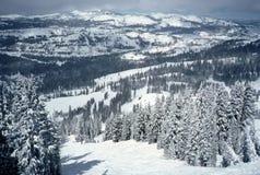 sugarbowl лыжи курорта сценарное Стоковая Фотография