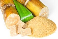 sugarcane Arkivfoton