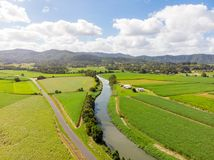 Australian Sugarcane Fields and Landscape. Sugarcane fields near the town of Murwillumbah and Wollumbin National Park Mt Warning in rural New South Wales Stock Image