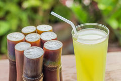 Sugarcane fresh juice with piece of sugarcane on wooden backgrou. Sugarcane fresh juice for a detox diet - Organic fruits on wooden background. Closeup image / Royalty Free Stock Image