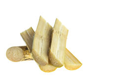 Sugarcane isolated on white background Royalty Free Stock Image