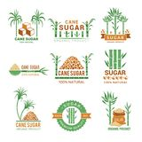 Sugarcane manufacturing. Sweets plants production farm industry leaf vector badges or labels with place for your text. Illustration of eco agriculture royalty free illustration