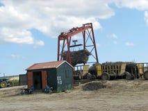 Sugarcane mechanical harvest Stock Photo