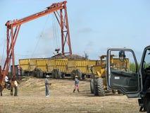 Sugarcane mechanical harvest Stock Images