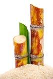 Sugarcane och socker Arkivfoton