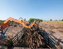 Sugarcane que está sendo carregado em um caminhão Fotografia de Stock Royalty Free