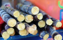 Sugarcane. In the streets of Hainan - sweet snack Royalty Free Stock Photos
