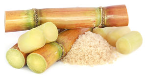 Sugarcane with sugar Stock Images