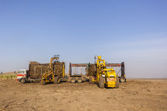 Sugarcane Tractor Loading Royalty Free Stock Photos